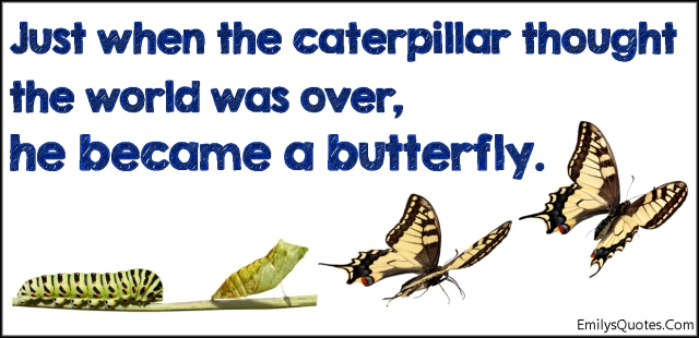 emilysquotes-com-amazing-great-inspirational-caterpillar-thought-world-over-end-butterfly-hope-encouraging-unknown