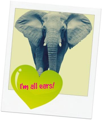 I'm All Ears Elephant .jpg